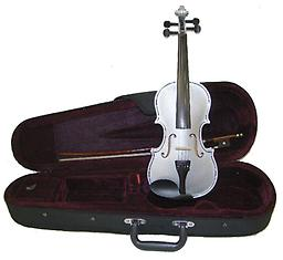 Silver Children's Violin with Case & Bow This Silver Childrens Violin is an affordable violin for students of all stages. This violin features hand carved woods and a tremendous tone and quality for the price.
