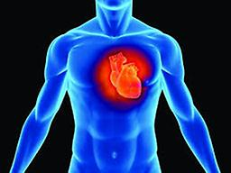 Cardiac C-Reactive Protein Recent research shows that the development of heart disease is in part due to inflammation in the body. Cardiac C-Reactive Protein for this inflammation and aids in the detection of heart disease.