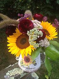 Sunflower Garden Sunflower, ranunculus, seedum, astrantia and grasses are whimsically arranged in this sunflower container. A great gift to send for any occasion.