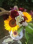 Sunflower Garden - Sunflower, ranunculus, seedum, astrantia and grasses are whimsically arranged in this sunflower container. A great gift to send for any occasion.