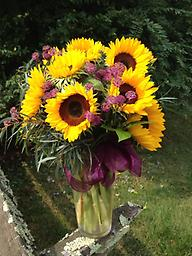 Dozen Sunflowers What is more cheerful than a big bouquet of sunflowers with a touch of fall astrantia for filler. This bouquet is sure to bring a smile to anyone's face.