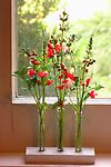 Mini Test Tubes with Stand (3) - This handmade set is the perfect platform for displaying individual stems/flowers.