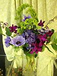 Beauty and Grace - This amazing bouquet features flowers fresh from Holland. Gorgeous anemonies, hydrangea, bells of Ireland, and dendrobium orchids are any flower lovers dream gift!