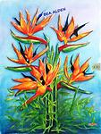 BIRDS OF PARADISE RISING - Brilliant Tropical Flowers stretch upwards from their nest of leaves to light up your wall. Must have!