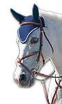 """PESSOA """"FIGURE 8 JUMPING BRIDLE - With genuine sheepskin disk. Competition quality in hand finished leather with impeccable details and performance."""