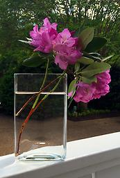 Moderne Rectangular Vase Less is often more and that is very much the case with this striking clear glass vase with thick glass bottom.