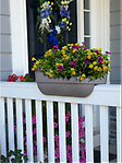"24"" Rectangular Railing Planter - Designed to sit on your deck or fence rail, this attractive planter is a great way to decorate any deck or yard setting."