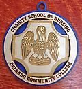 J. Wooden Associate Degree Pin Ornament - Adorable wooden ornament in the image of the Charity School of Nursing-Delgado Community College nursing pin.