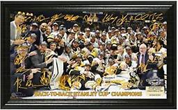 2017 Stanley Cup Champions Signature Rink Featured in a 12 x 20 wood frame are the facsimile (exact replica) signatures of the 2017 Stanley Cup Champions over an image of the team huddled around the Stanley Cup following their victory