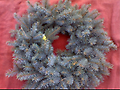 Make Your Own Blue Spruce Holiday Wreath - Saturday, December 2, 2017 Time: 10:30am - 12:00pm Ages: Recommended for adults or children accompanied by adults Maximum of 20 registrants Cost: $15 per wreath Instructor: M. Ceneri