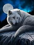 """""""Guardian of the North"""" by Lisa Parker - Canvas"""
