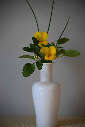 Lover White Vase Words that come to mind to describe this vase: simple, elegant, pure. I could go on and on.*