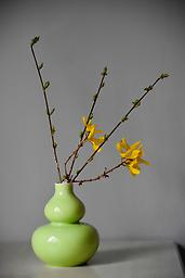 Double Gourd Spring Green Vase Could this vase be any more charming?*