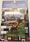 """2 for 1 Panel Product - Quilt pattern for 10"""" squares and 2.5"""" strips"""