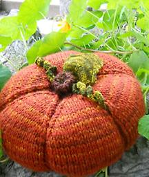 Pumpkin Pillow with Marie Mayhew Saturday, October 20 1-3pm Yarn 15% off Supplies not included