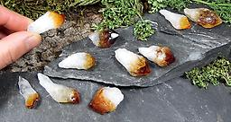 Small Citrine Crystal Points Raw Crystals & Minerals