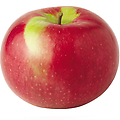 MacIntosh - 5-6' Bareroot, a northeastern favorite, fruit colors early into a deep red. Cold hardy and productive tree, bright white flesh with crisp texture. Terrific for eating directly off the tree.