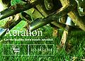 Lawn Core Aeration - Scheduled lawn aeration