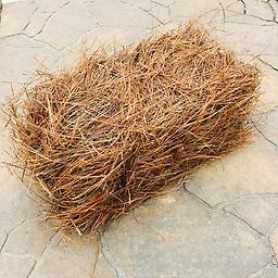 DELIVERED PINESTRAW BALE OF PINESTRAW