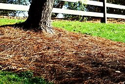 INSTALLED PINESTRAW BALE COVERS APPROXIMATELY 25-30sqft.