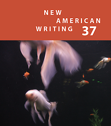 New American Writing 37 Paul Hoover, Editor Cover Design Marc Vincenz