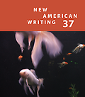 New American Writing 37 - Paul Hoover, Editor Cover Design Marc Vincenz