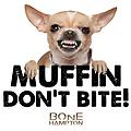 Muffin Don't Bite (Gray) - Muffin Don't Bite in Gray