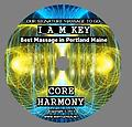 CORE HARMONY - OUR SIGNATURE MASSAGE TO GO CORE HARMONY facilitates WHOLE BRAIN SYNCHRONIZATION creating an HOMEOSTATIC BALANCE TARGETING: BLOOD PRESSURE LYMPH SUPPORT