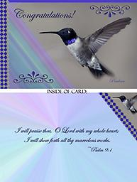 """HH1304GC Congratulations - Black Chinned Hummingbird Greeting Card This 5"""" x 7"""" Congratulations Card has the profile of a male Black Chinned Hummingbird in flight. He has such a simple beauty with his blue collar lit up by the sun."""