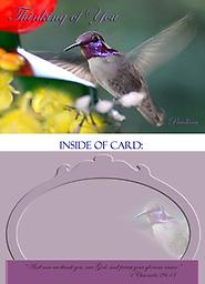 """HH1307GC Thinking of You Costas Hummingbird Greeting Card This 5"""" x 7"""" Thinking of You Card has a brilliantly colorful, mature male Costa's hummingbird. His gorget (throat area) and head is in full color!"""