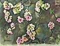 """QUINCE BLOSSOMS - Watercolor 11""""x14"""" CHARMING STUDY OF DELICATE PINK BLOSSOMS AGAINST A RUSTIC STONE WALL"""