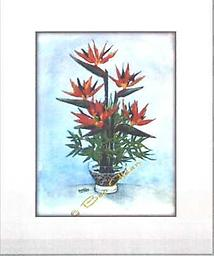"""Bird of Paradise PRINT PRINT 8""""x10"""" Affordable version of the original watercolor. MATTED AND FRAMED UNDER GLASS (11""""x 14"""")"""